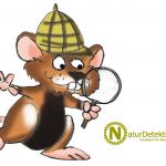 Naturdetektive - Traumberuf Tierforscher