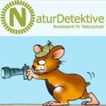NaturDetektive - Detektivauftrag im November