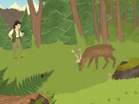 Habitat Wald