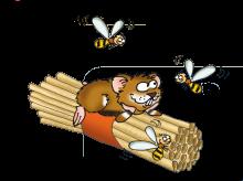 Naturdetektive: So baust du ein Bienenhotel!