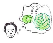 Junge denkt an Salat
