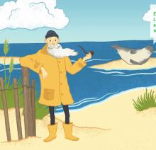 Habitat Küste