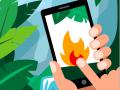 Die Rohstoffe im Handy kommen aus dem Regenwald