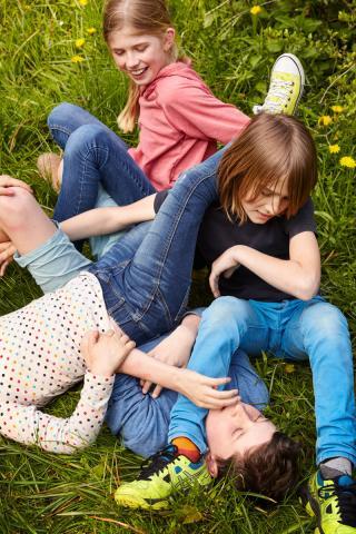 Drei Kinder raufen sich im Gras